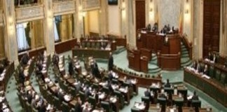 Document : Senatul a votat inchisoare de la 2 la 7 ani pentru cei ce omoara si chinuie animale
