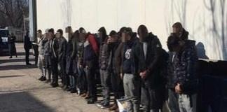 Cincisprezece cetateni din Siria, Irak si Afganistan, ascunsi intr-o remorca frigorifica, depistati la Calafat
