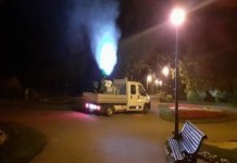 Salubritate Craiova : Începe o nouă etapă de dezinsecție pe domeniul public