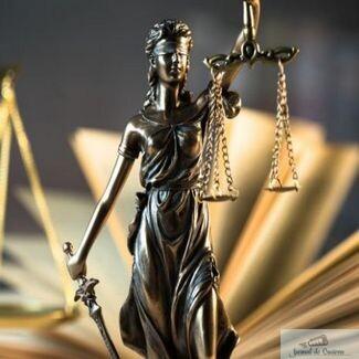 EXCLUSIV ! Fratele judecatorului care l-a condamnat pe Adrian Mititelu a facut puscarie pentru trafic de influenta !