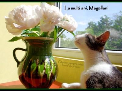 La mulți ani, Magellan!