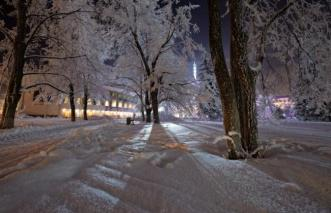 iarna 5