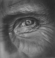 Eye (II) study, 2014 Pencil on paper 30x30 cm