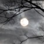 【2016ハロウィン】おすすめのホラー系ゾンビコスチューム7選