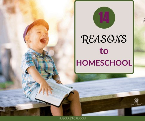 Reasons to Homeschool | Benefits of Homeschooling