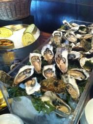 Fresh oysters, Catalunya
