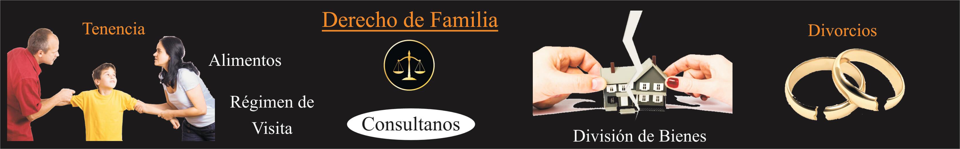 banner derecho de familia principal