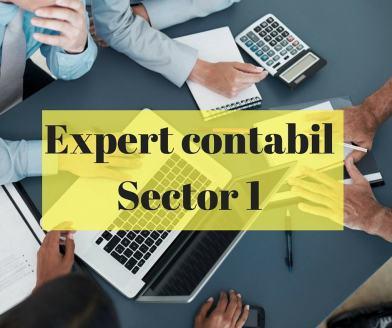 Expert contabil Sector 1