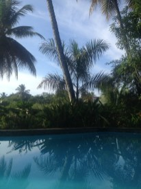 Pool in Alis Surfcamp Cabarete