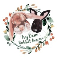 Ivy Dene Rabbit Rescue