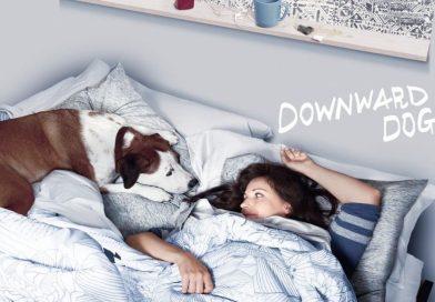 Review pilot – Downward Dog : on continue ou pas ?