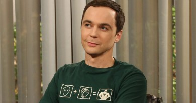 Sheldon - Jim Parsons - Just About TV