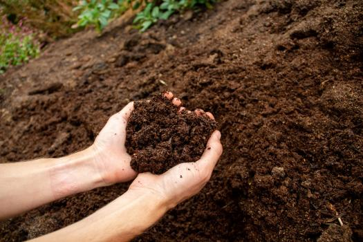 Justa Farm's Natural OMRI Certified Organic Fertilizer, showing rich, earthy texture for organic farming and gardening held in a farmer's hands.