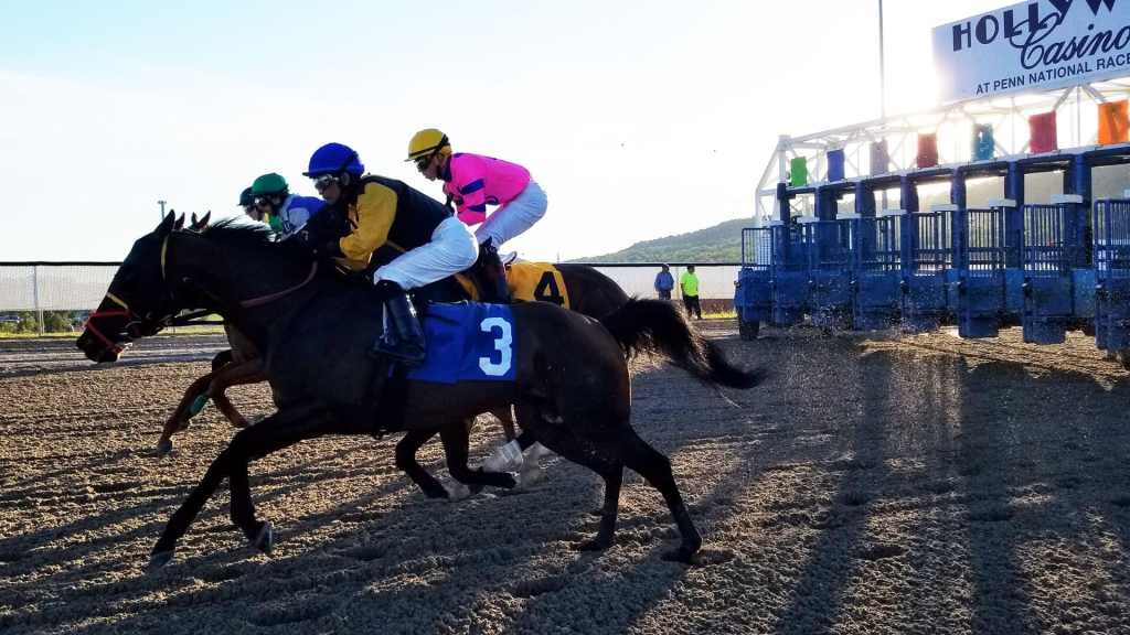 Affordable racehorse partnerships in Pennsylvania allow partners to potentially win bonus money at tracks in PA, like Penn National Racetrack, shown here.s