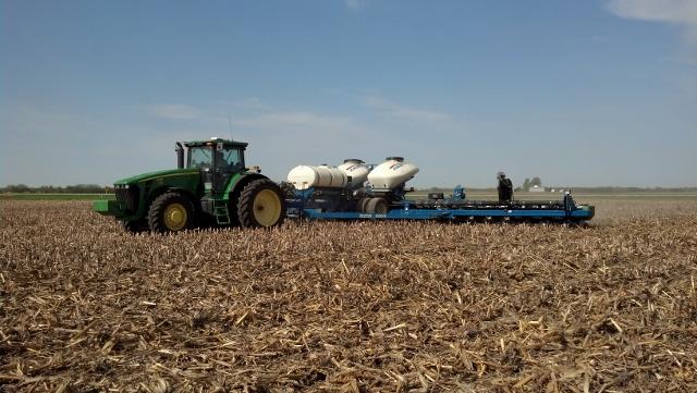 Planting Beans Toon Farm 14