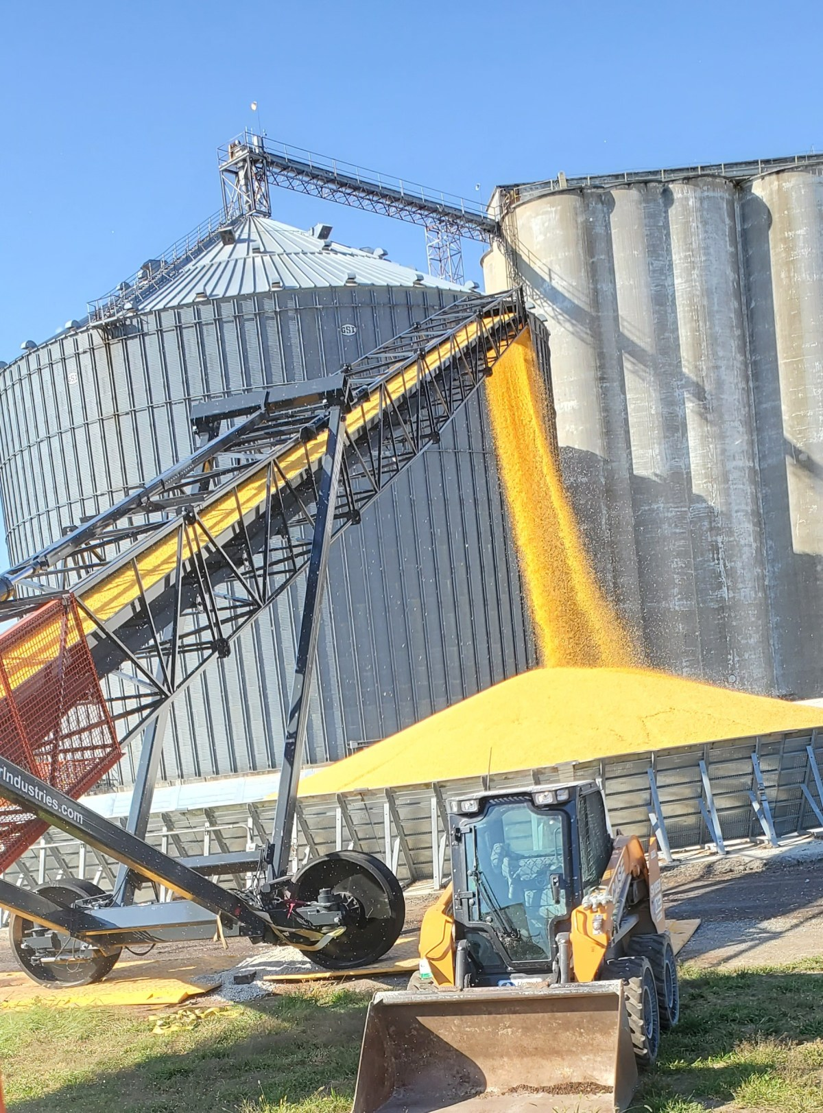 Farmer City Corn Pile