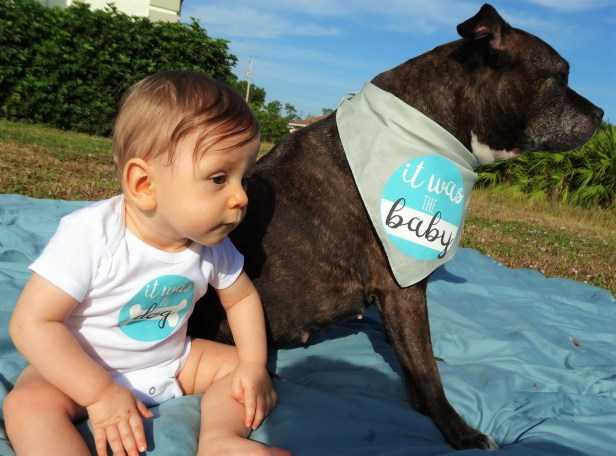 'It was the Dog!' 'It Was the Baby!' tee and bandana set