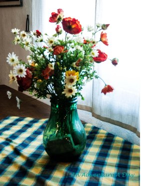 Table decorations at horse stable on the Appian Way