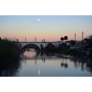 Sunset over the Ponte Flaminia - probably my favorite non-pedestrian bridge in Rome. I love the reflections of the statues in the Tiber, and catching it in the glow of the evening - pure magic!