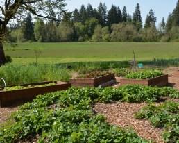 TSWCD_Sustainable_Soil_Workshop_04-20-15_71
