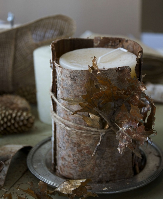 Birch Candle CG 2