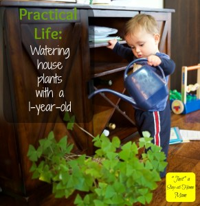 watering plants with kids