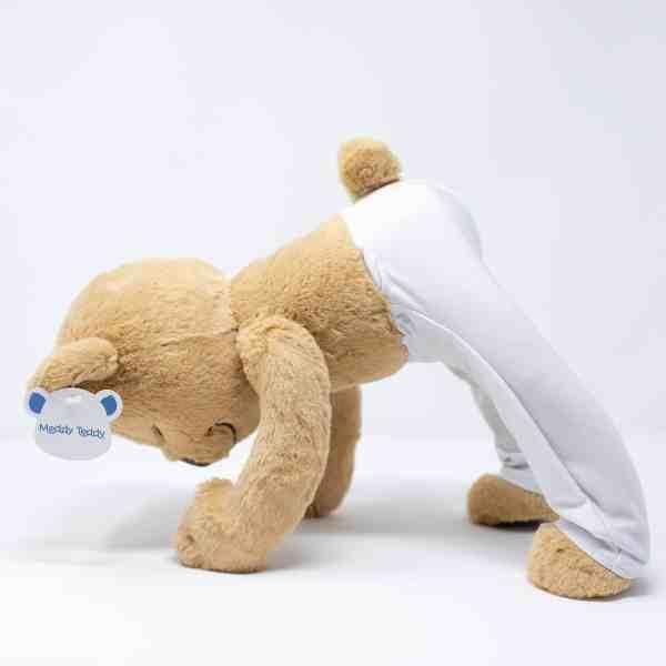 Meddy Teddy Downward Facing Dog