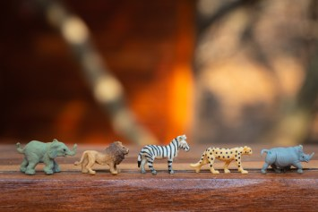 toy animals lined up in a row