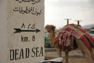 Billboard pointing to the dead sea and a camel