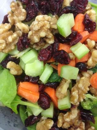 craisin walnut salad