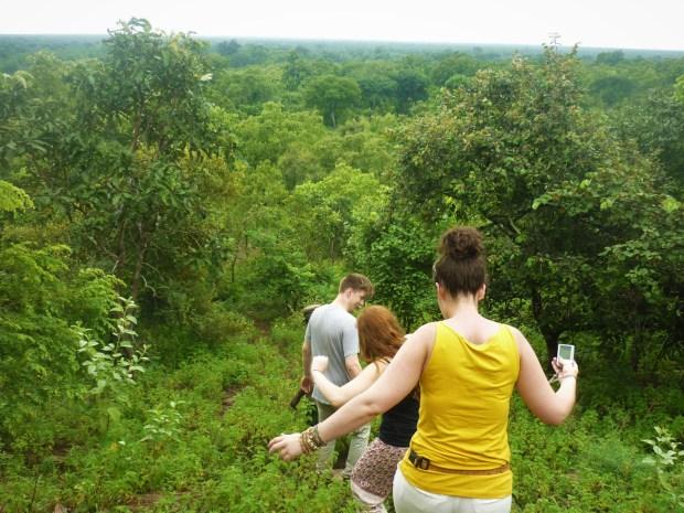 mole national park ghana