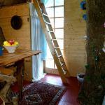 tree sparrow house cornwall interior 2