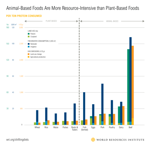 sustainable_diet_graph