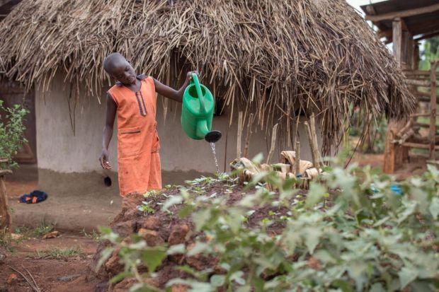 Kenya Vegetable Garden Charity Gifts