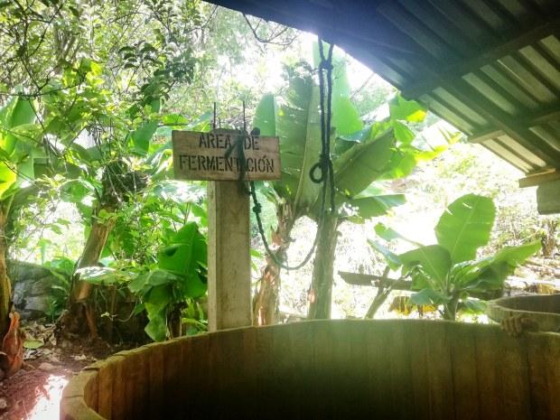 Mezcal distillery Oaxaca San sebastian