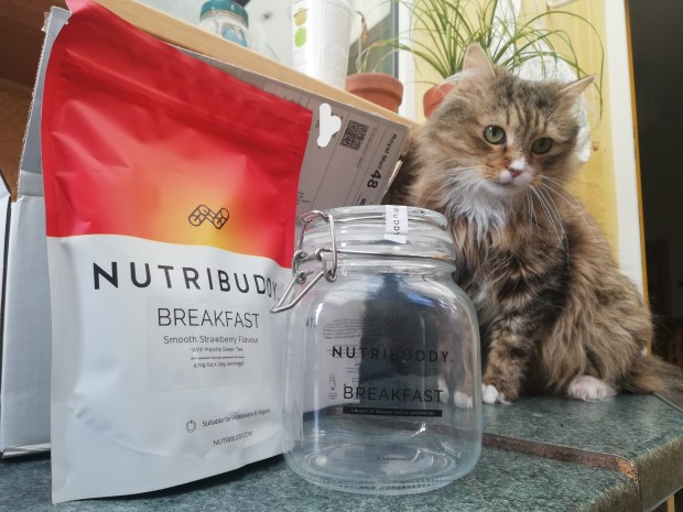 nutribuddy breakfast shake fluffy cat