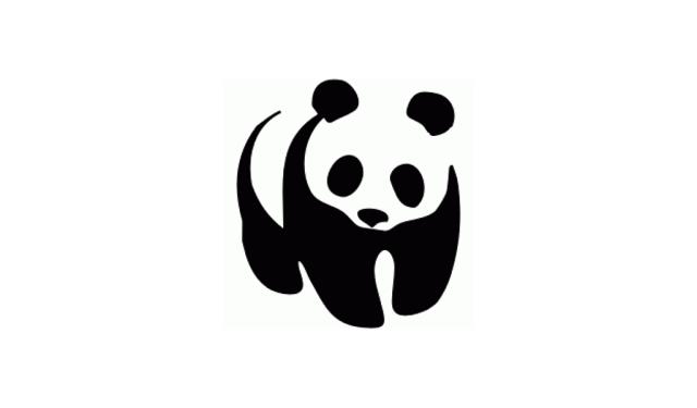 Logo Design Price Chennai