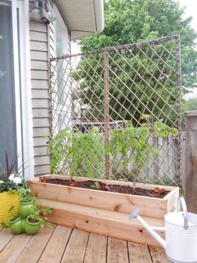 Trellis and wood planter