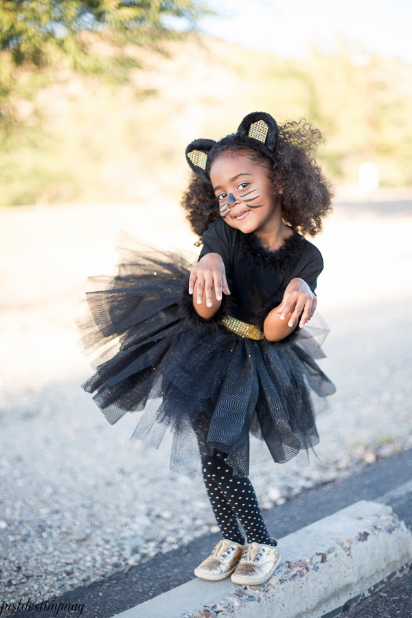 Easy Childs Cat Costumes  - Just Destiny_-24