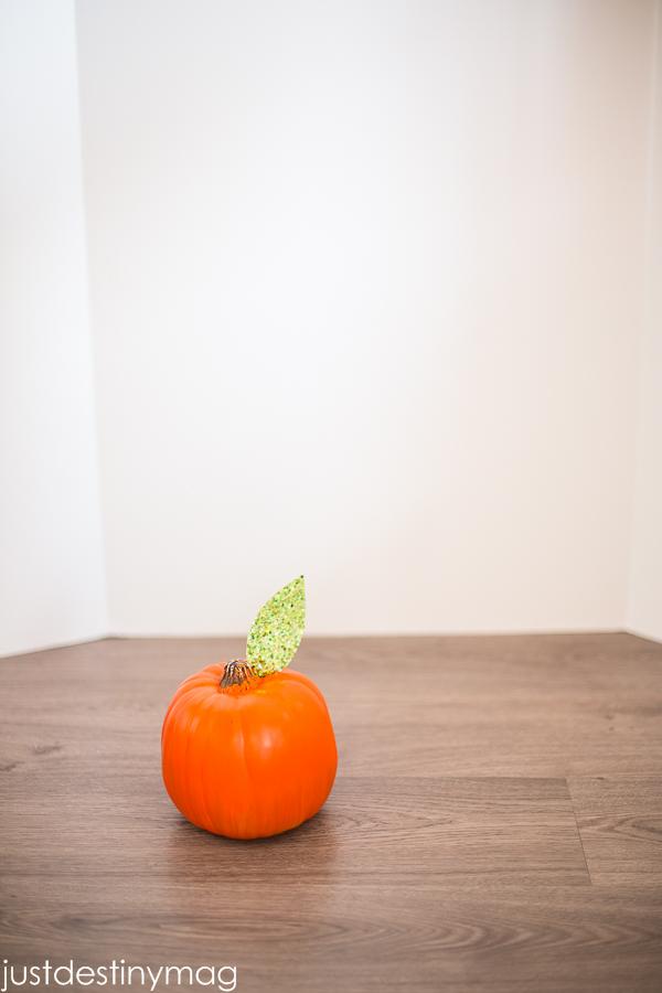 Unique Pumpkins  - Just Destiny_-4