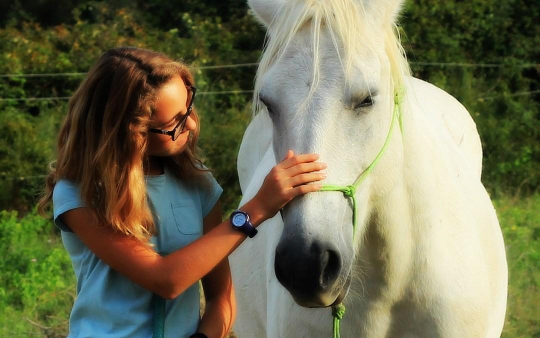 La poignée de main du Horseman