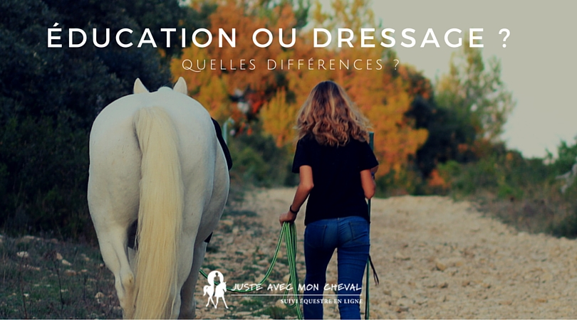 Education ou dressage - (1)