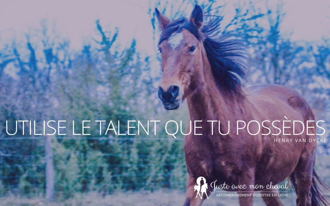 Utilise le talent que tu possèdes