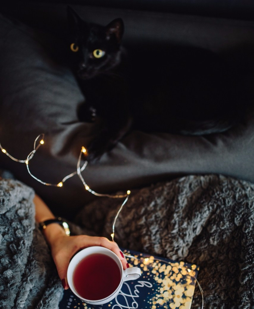 kaboompics_Young woman with black cat reading Hygge book and drinking coffee or tea