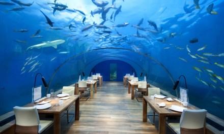 Conrad Maldives Hotel: Fabulous Underwater Restaurant