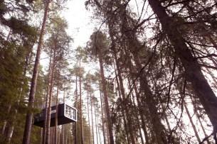 Treehotel, Harads, Sweden
