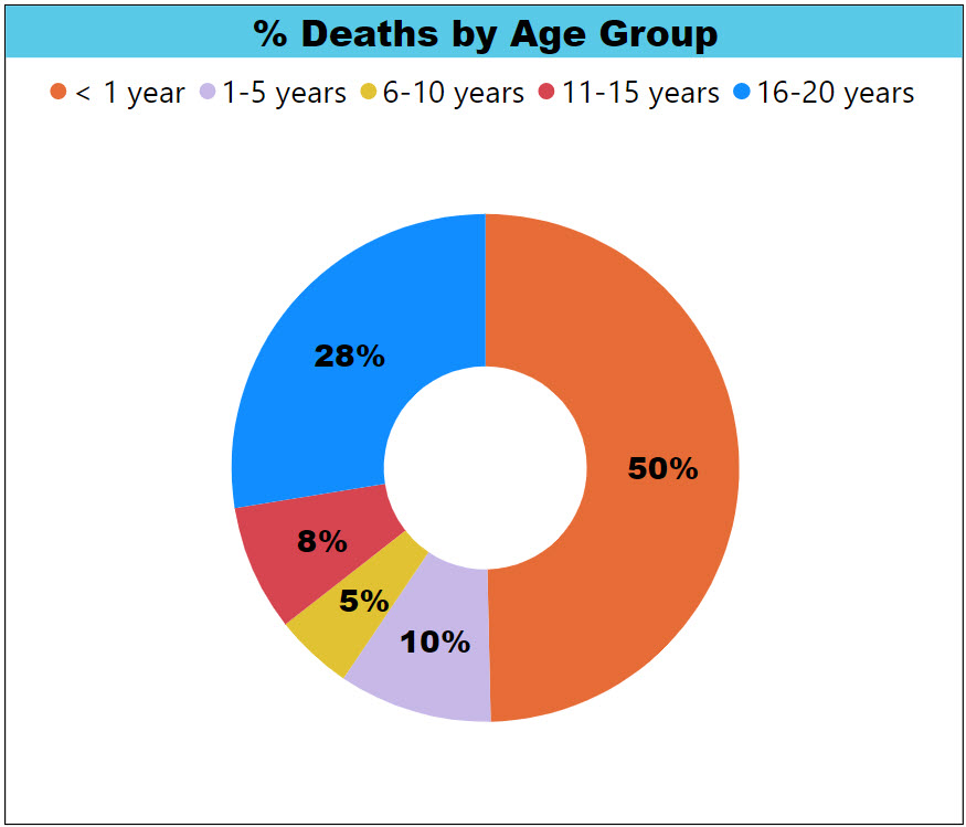 Percentage Child Deaths by Age Group Pie Chart