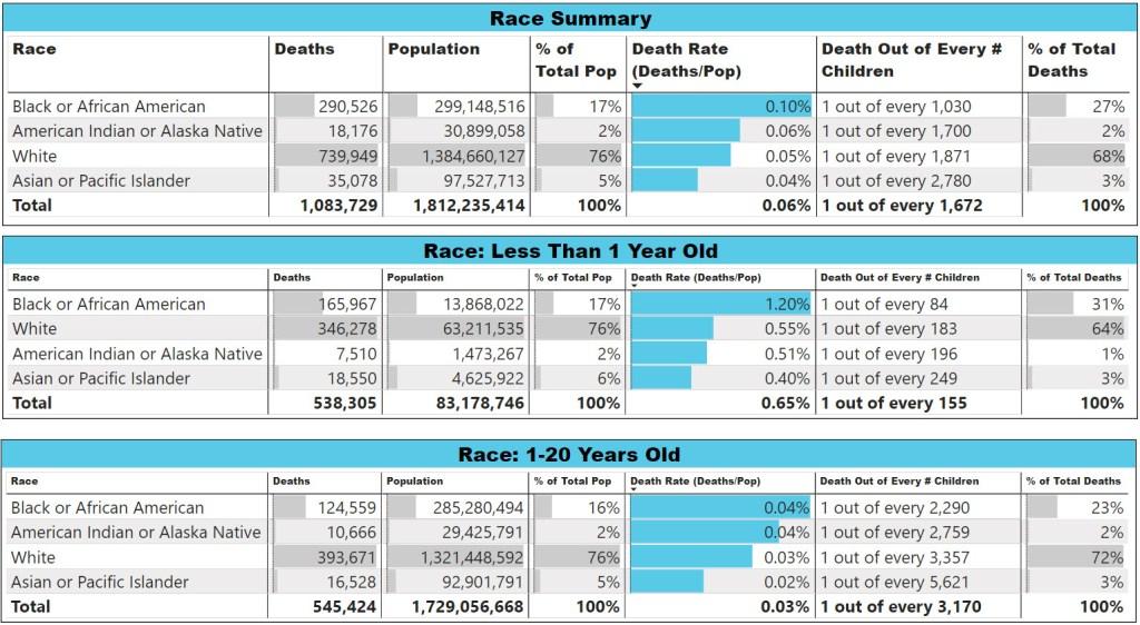Child Loss Statistics Race Summary