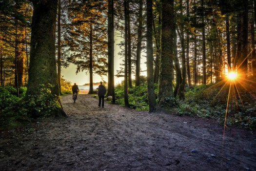 This path leads to beach near Tofino, BC and just like the beaches at home in Florida, a stream of people arrive here for sunset each evening.  The earth turns, the sun goes down, round and round we go. Play it again Sam. The things that happen with the light at that golden hour drive me a little bit crazy, and if I don't have a camera, possibly a little more than a little bit. Addiction? Obsession? Perhaps. I suppose there's no harm as long as nobody gets hurt. And nobody will get hurt,  …as long as I have my camera.