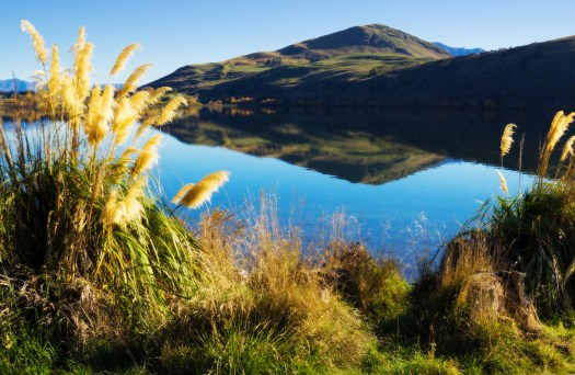This is Lake Hayes in southern New Zealand. I was here about six months ago and I already miss it. I think the thing I miss the most is the amount of wide-open space with amazing landscapes.  Certainly we have beauty in North America, it's there, waiting, not going anywhere. My ambition is changing a little bit and I'm craving more and more landscapes. I guess it's one of those things that once you get hooked on you keep looking for new vistas wherever you go. That's probably not a bad thing.